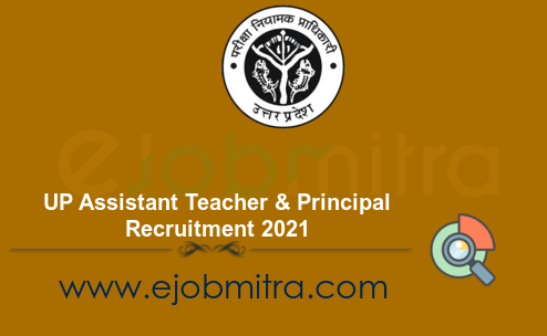 UP Assistant Teacher & Principal Recruitment 2021
